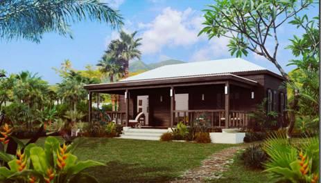 Paradise Palms - 棕櫚天堂